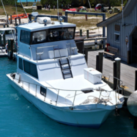 The Y-Knot Boat